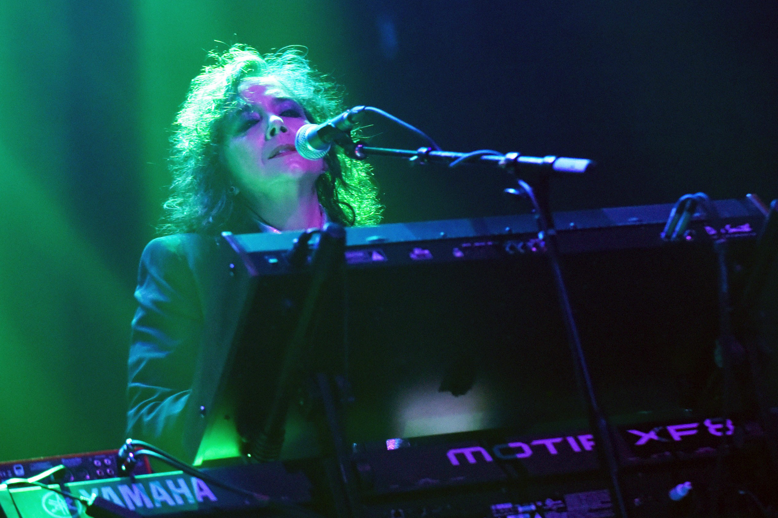 Prince's Revolution Keyboardist Lisa Coleman Releases First Solo LP