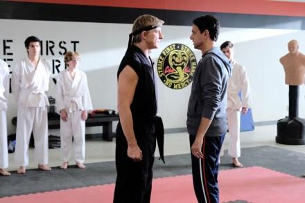 Cobra Kai' Season 2 on YouTube Premium: Alan Sepinwall's