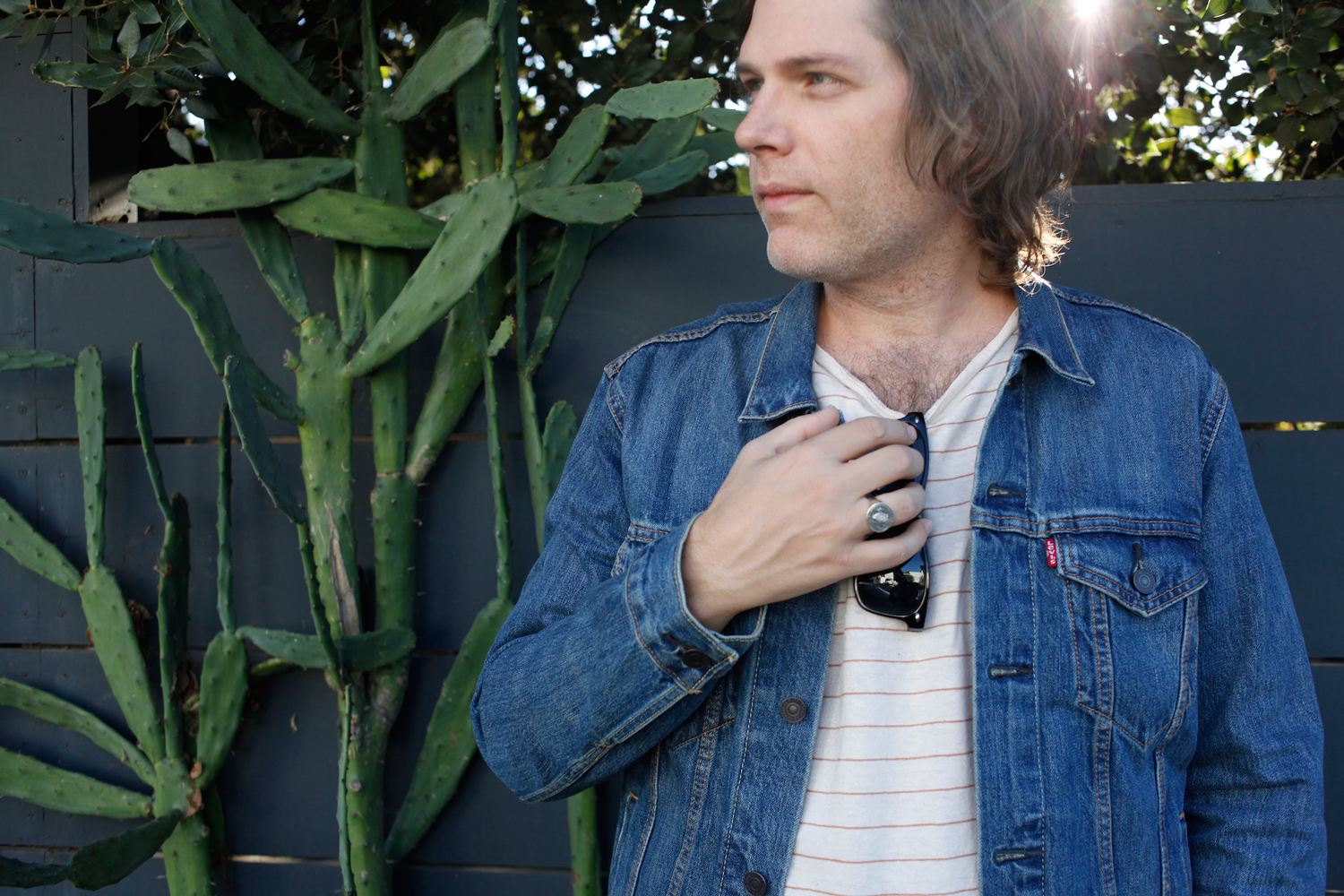 Song You Need to Know: Fruit Bats' 'Gold Past Life'