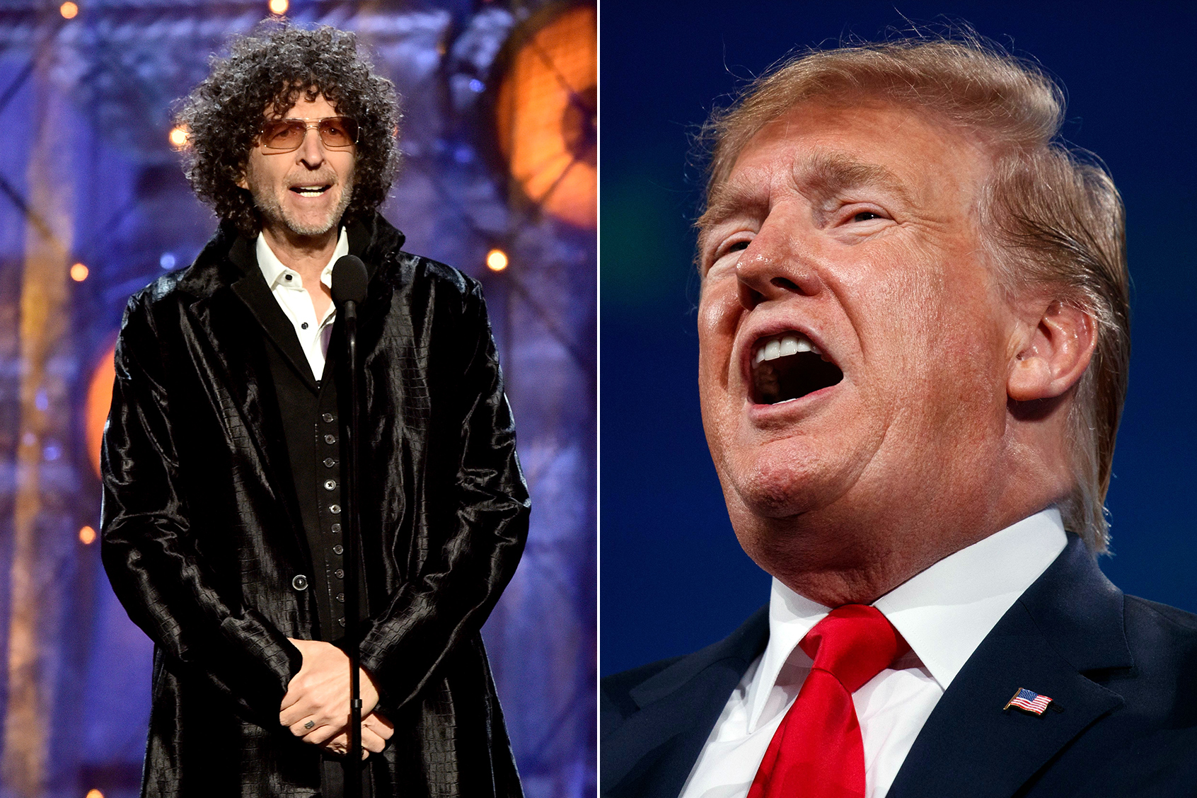 Howard Stern: Donald Trump 'Did Not Want to be President'
