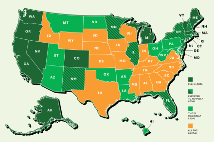 Map Of The United States With The States.Weed Map Status Of Pot Legalization Across America Rolling Stone