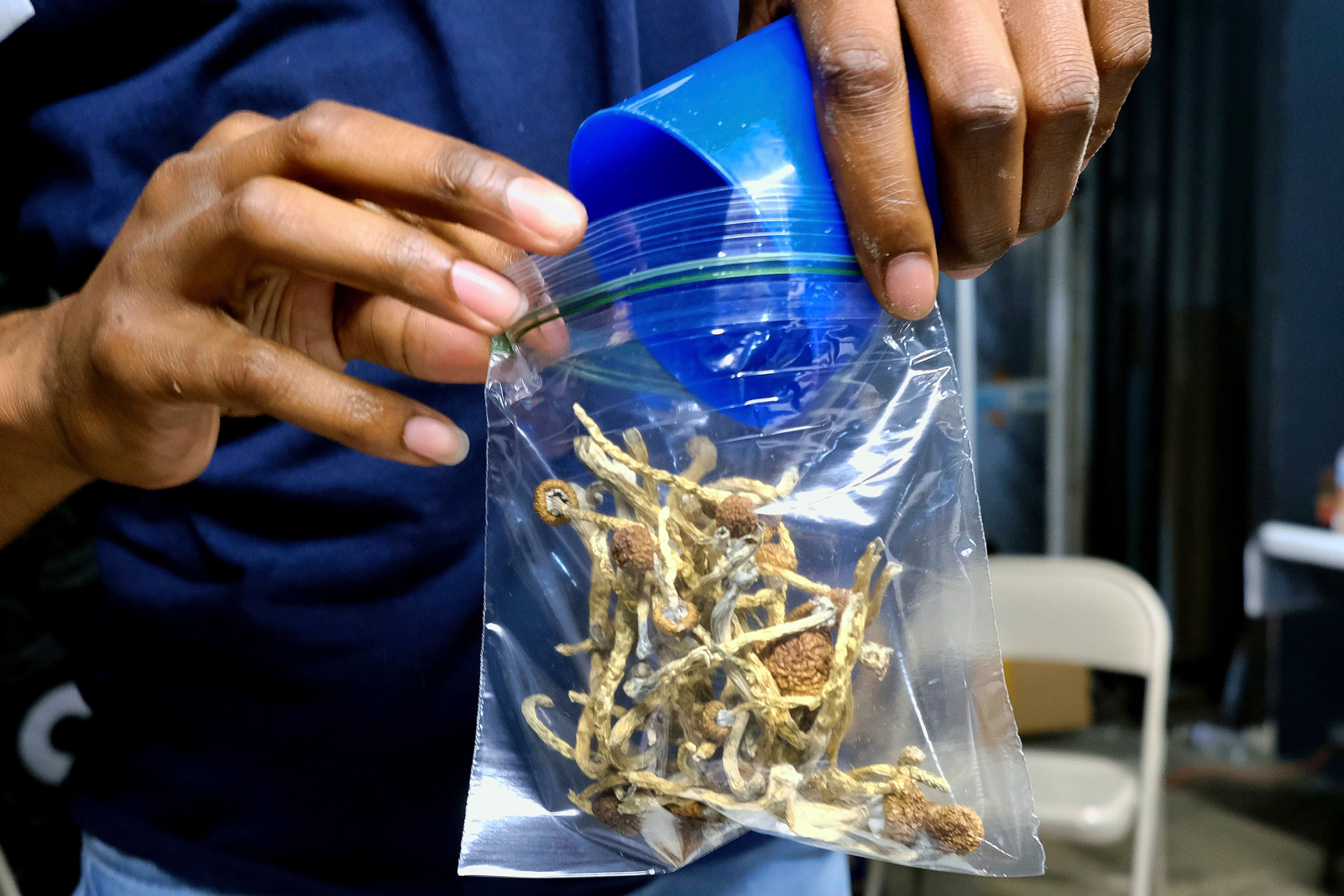 Oakland Becomes Second City to Decriminalize Psychedelic Mushrooms