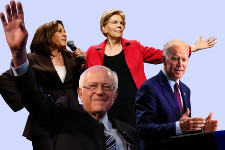 Top News Events Of 2020.Democratic 2020 Presidential Candidates Ranked Rolling Stone