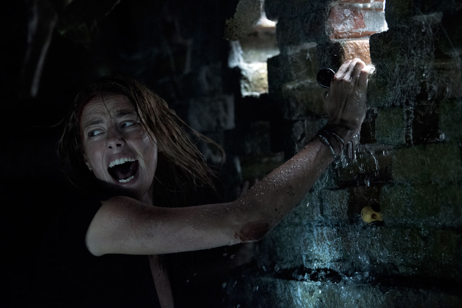 'Crawl' Review: See You Later, Alligators
