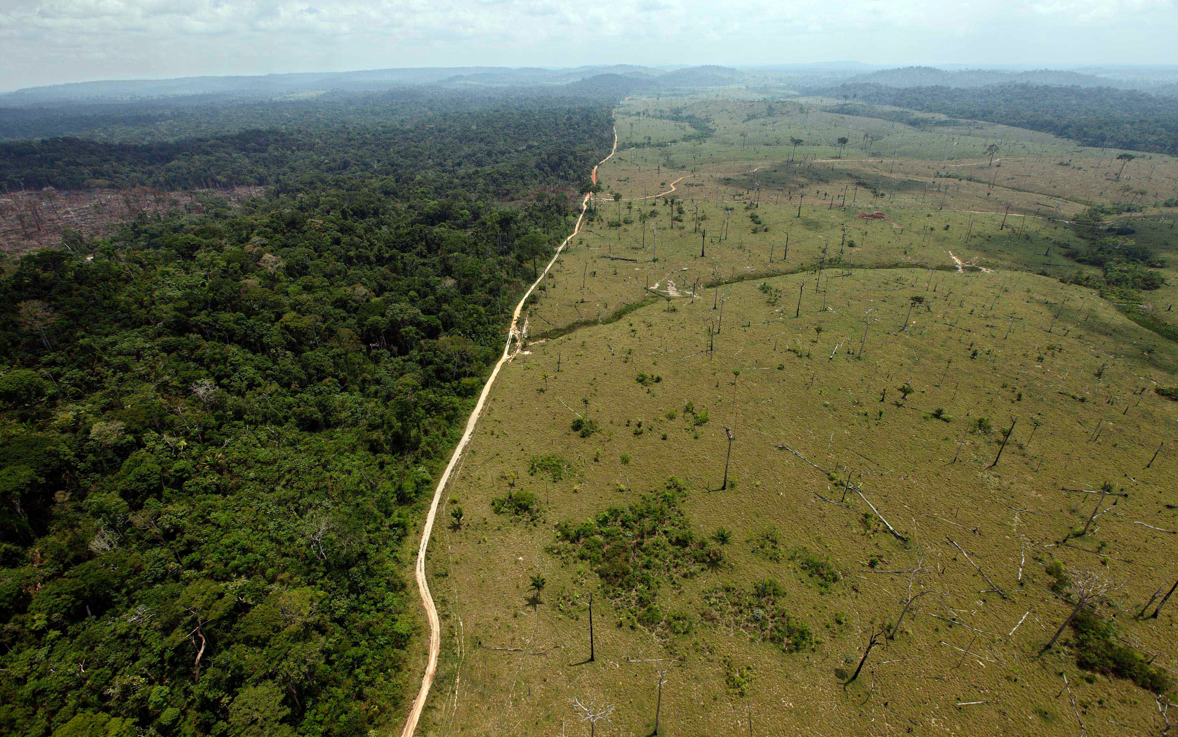 A deforested area near Novo Progresso in Brazil's northern state of Para. Brazil detained a land-grabber in Para state thought to be the Amazon's single biggest deforester, according to the country's environmental protection agency. The Brazilian Institute of Environment and Renewable Natural Resources said Ezequiel Antonio Castanha, detained, operated a network that illegally seized federal lands, clear-cut them and sold them to cattle grazersBrazil Amazon Deforestation, Novo Progresso, Brazil