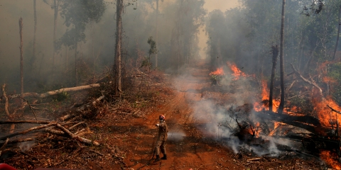 A firefighter from ABAFA Amazonia operation puts out a fire in a forest in the city of Uniao do Sul, in Mato Grosso, Brazil September 4, 2019. REUTERS/Amanda Perobelli - RC141DDF8F30