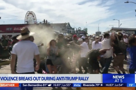 Video Shows Man in MAGA Hat Blasting Anti-Trump Protesters With Bear Repellent