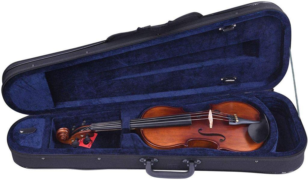 aileen-violin-case