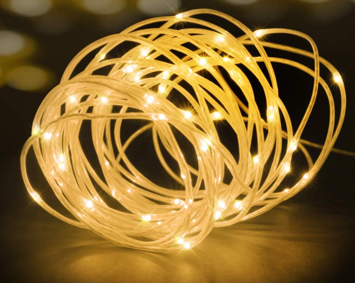 The Best Rope Lights 1