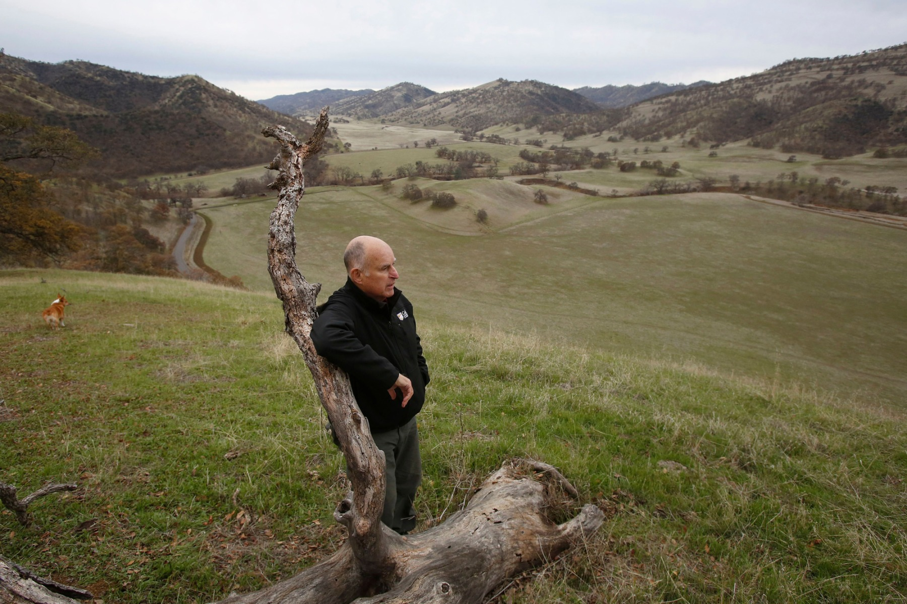 Gov. Jerry Brown views his Colusa County ranch, near Williams, Calif. Brown will retire to the ranch when he leaves office Jan. 7, 2019, after a record four terms in office, from 1975-1983 and again since 2011Jerry Brown Departs, Williams, USA - 22 Dec 2018