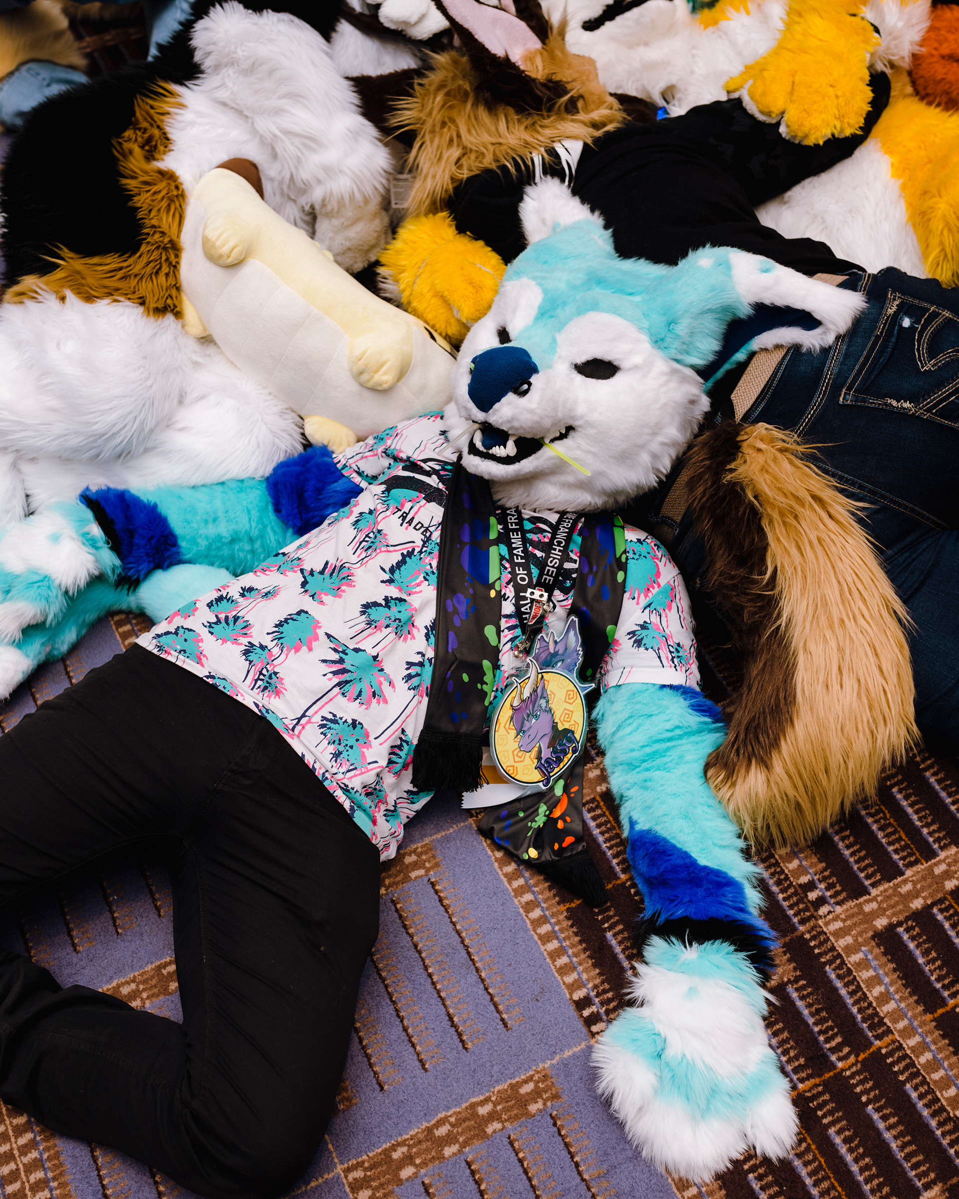 December 4th, 2019 - Rosemont, IL - Midwest Furr Fest at Donald E. Stephens Convention Center. 'Fur pile' on the convention floor