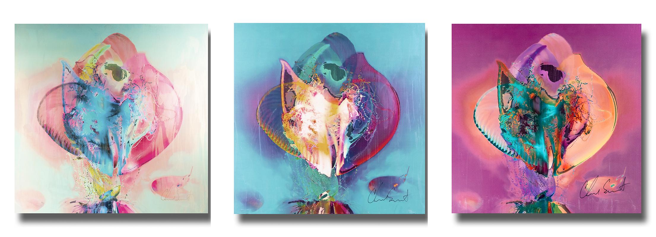 jellyfish series