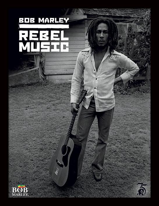 Bob Marley Rebel Music Poster