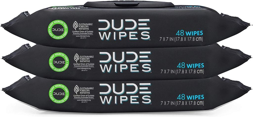 DUDE wipes review flushable wet wipes