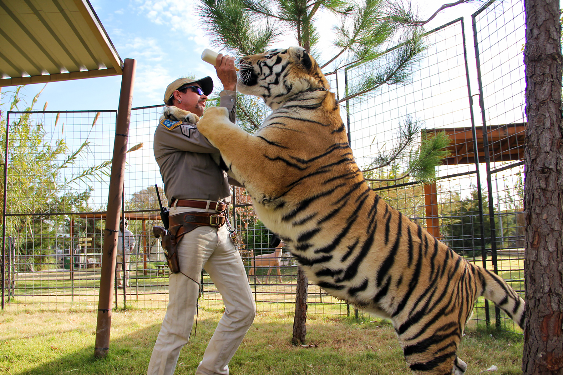 Big Cats, Cults and Murder: Inside the Making of Netflix's 'Tiger King'