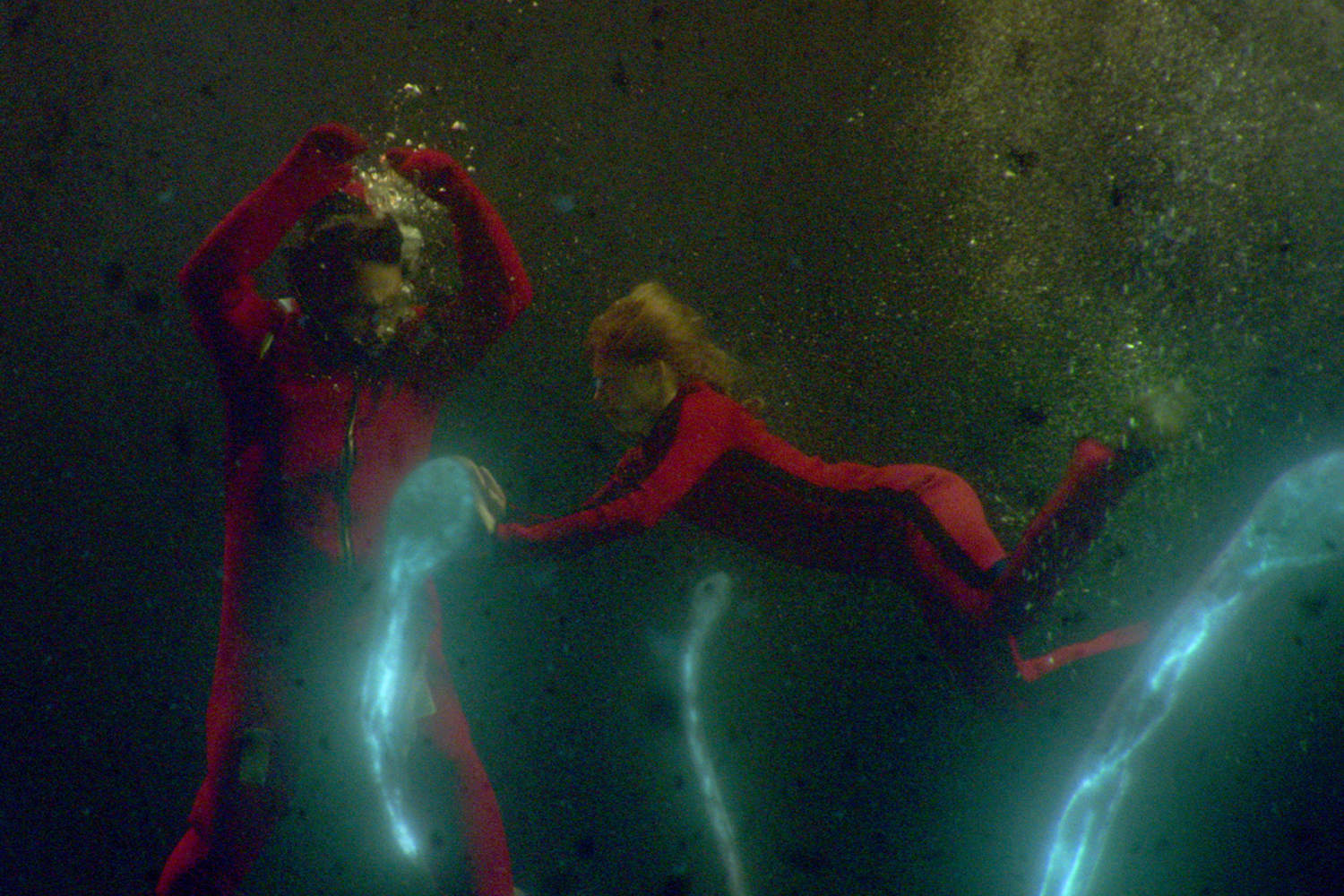 'Sea Fever' Review: From Monster Movie to Eerily Timely Pandemic Horror