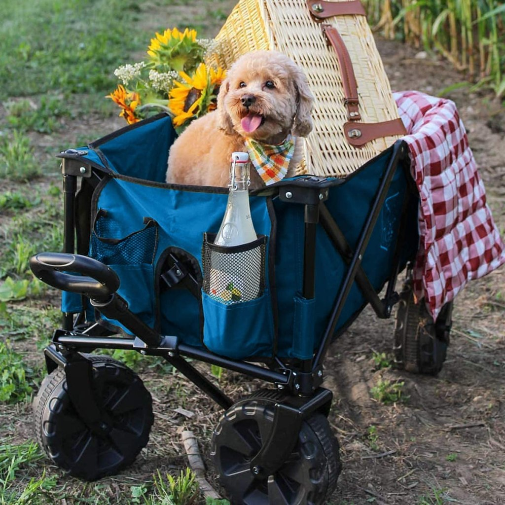 best portable wagon