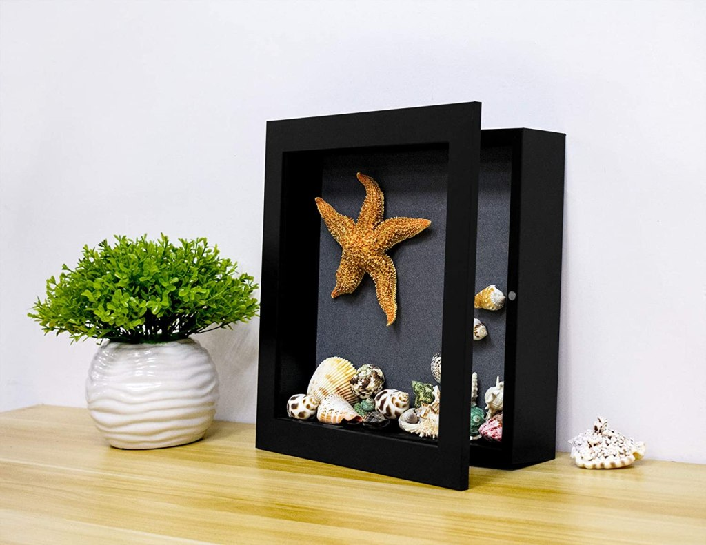 best large shadow box
