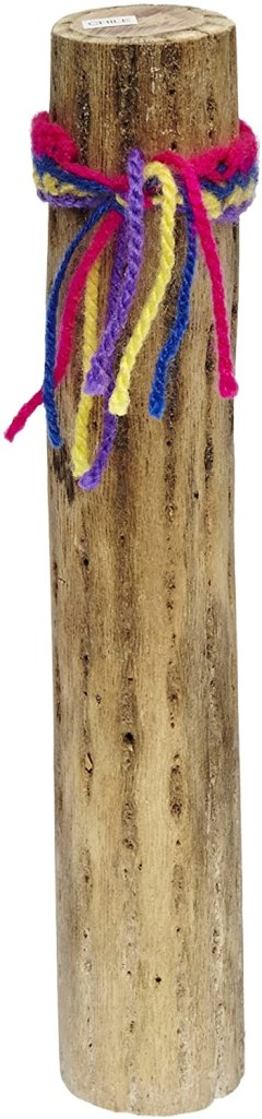 cactus rainstick