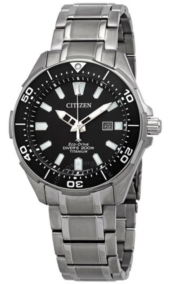 diver watch bracelet citizen