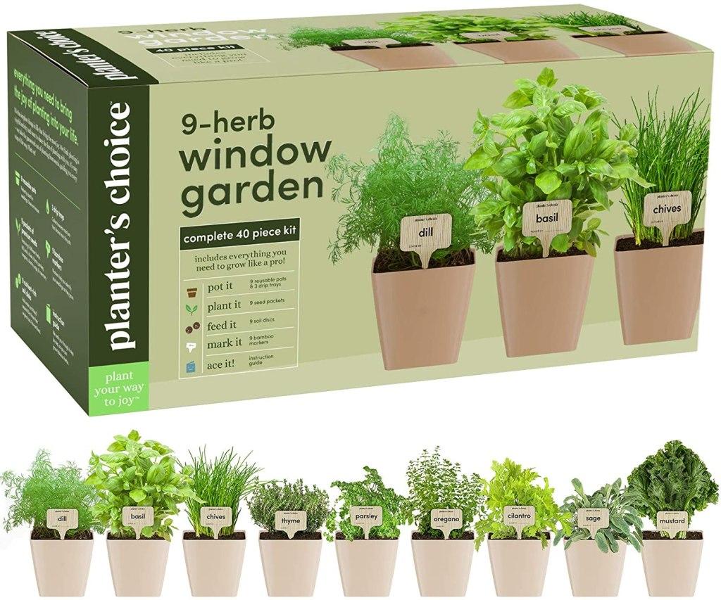 9 herb window garden windowsill