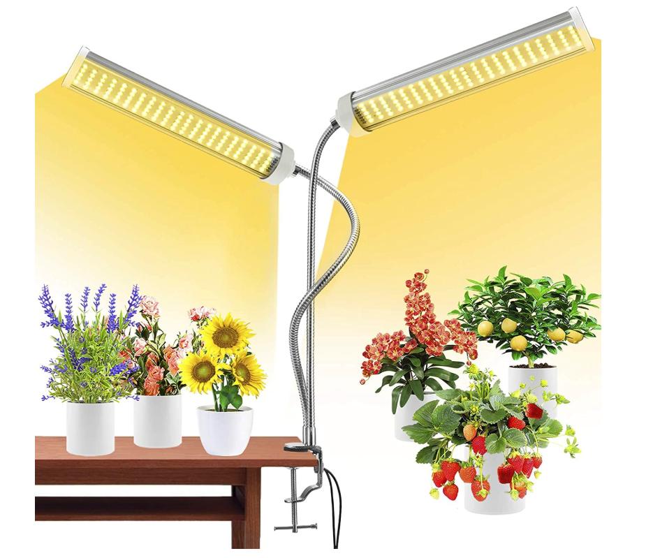 Moya Full Spectrum Growing Light for Indoor Plants