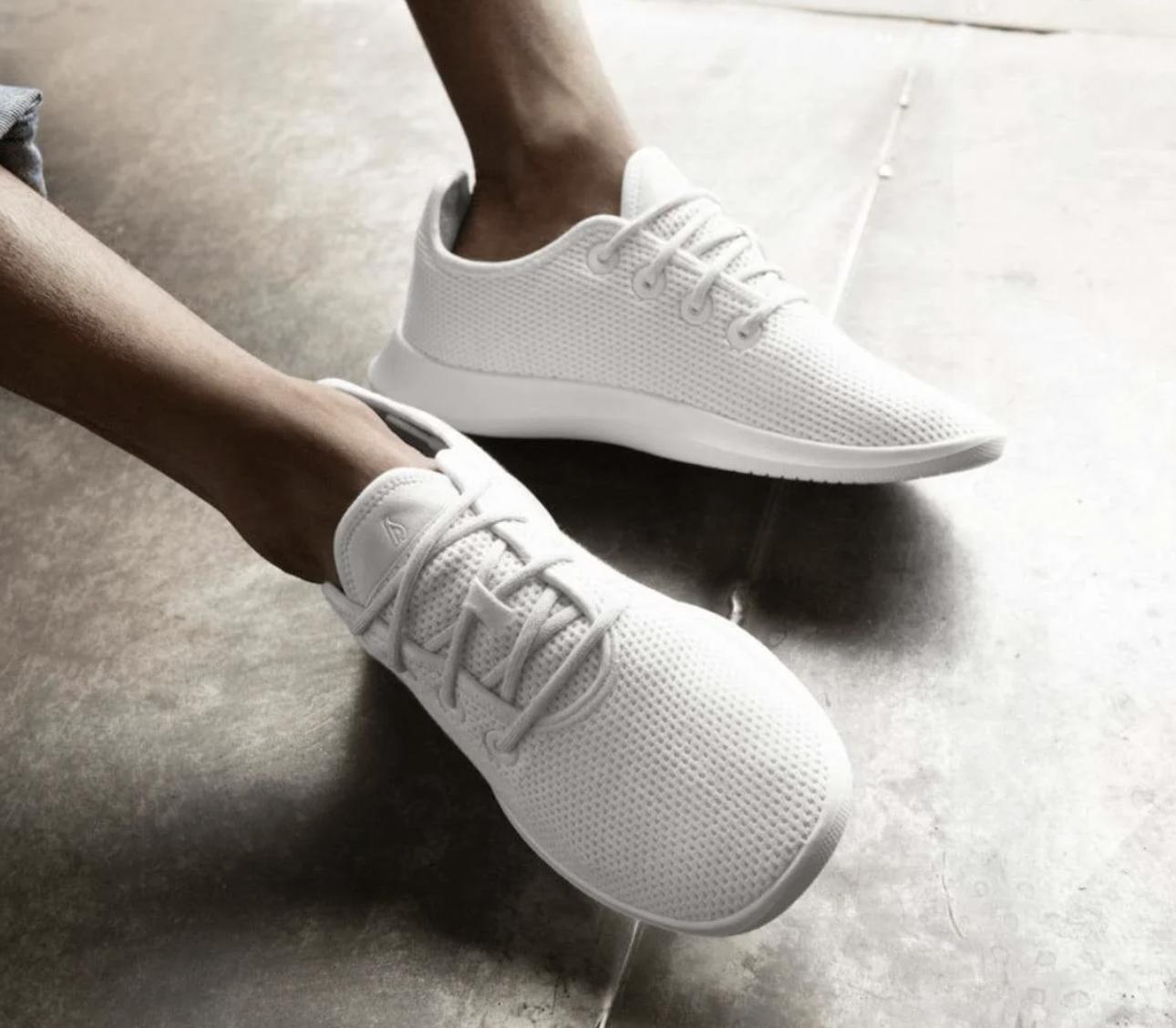 allbirds sneakers white