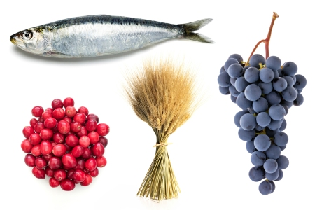 climate foods