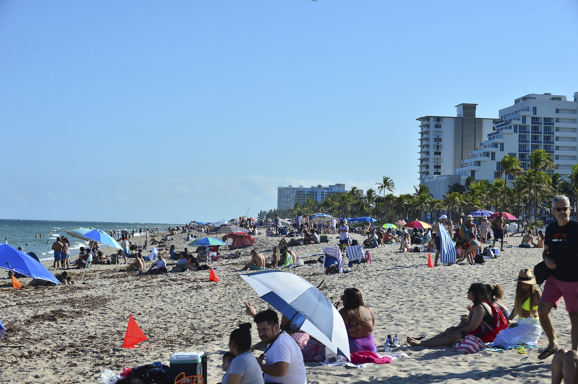 <p>Florida Reports Close to 12,000 Covid Cases Caused by Variants, Most in US thumbnail