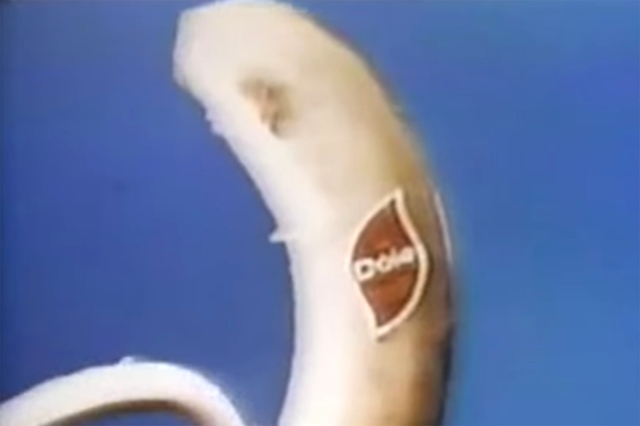 Flashback: Pink Floyd's 'The Great Gig in the Sky' Used in 1974 Dole Bananas Commercial.jpg
