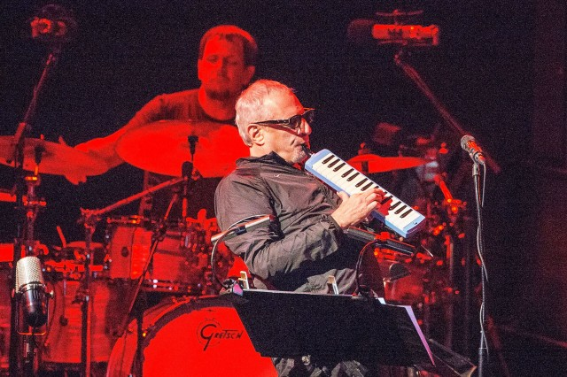 Steely Dan to Hit the Road This Fall on the Absolutely Normal Tour.jpg