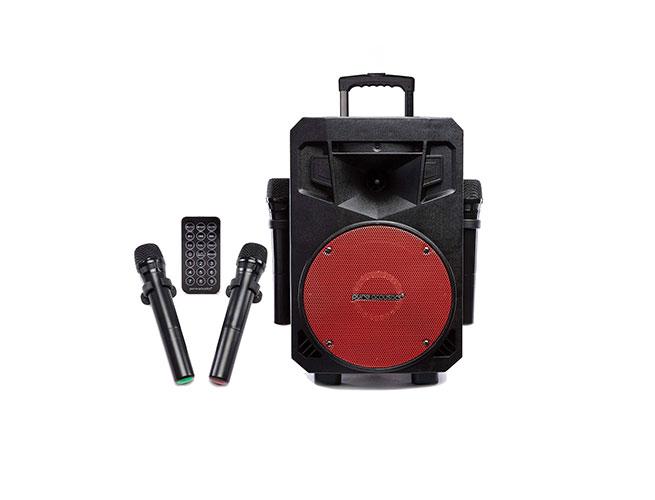 Pure-Acoustics-Wireless-Portable-Bluetooth-PA-Audio-Speaker