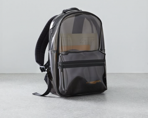 West-Elm-Clear-Backpack