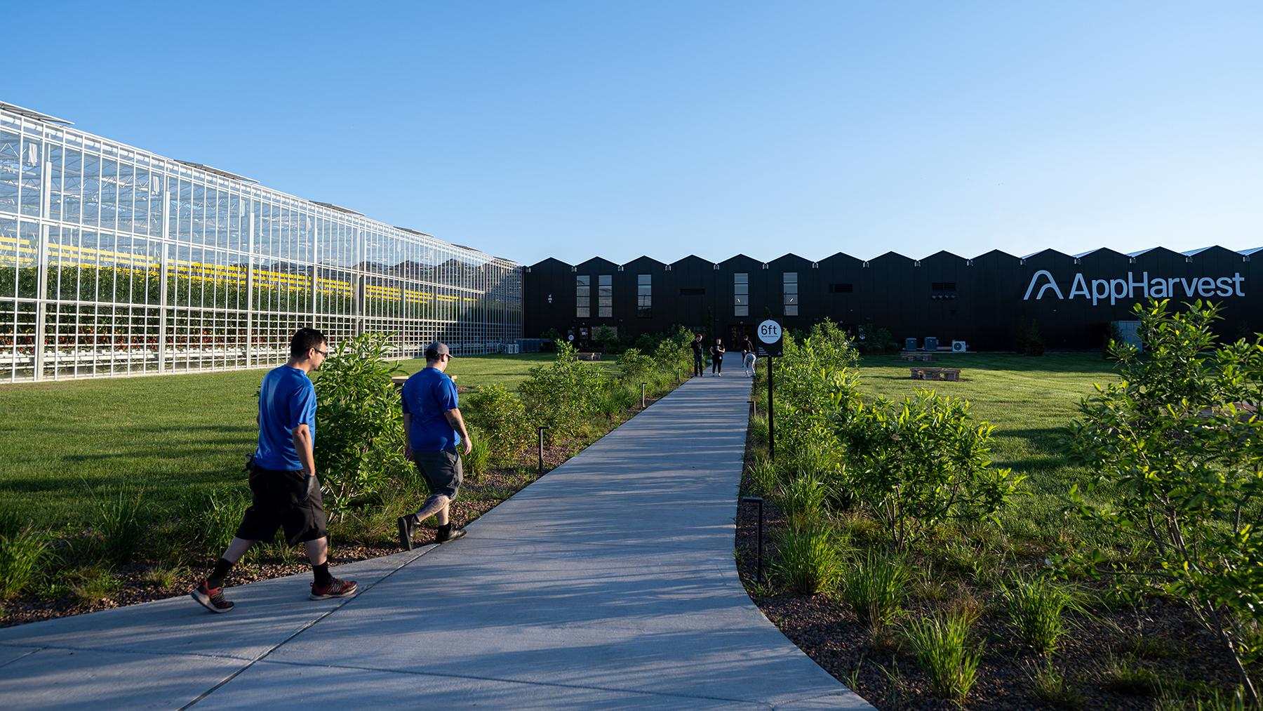 MOREHEAD, KY - 15 GIUGNO: I dipendenti camminano lungo un sentiero fino all'ingresso principale di Appharvest, una serra incentrata sulla tecnologia, il 15 giugno 2021 a Morehead, KY. (Foto di Jon Cherry per Rolling Stone)