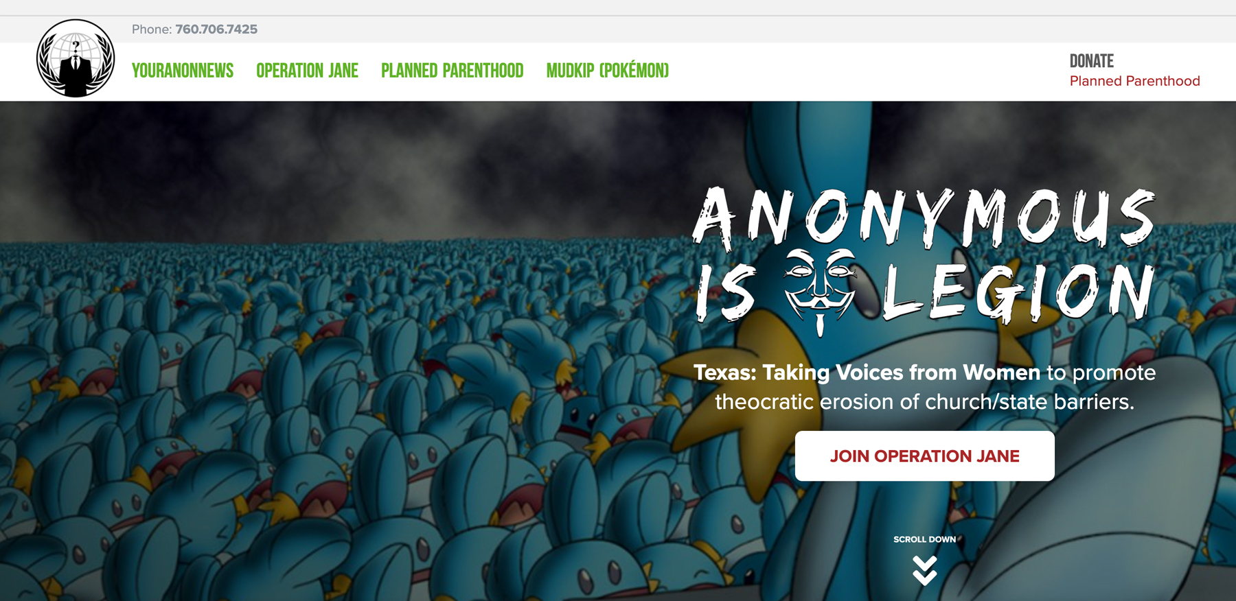 The hackers redecorated the Texas GOP website to promote their cause and revel in Pokemon memery