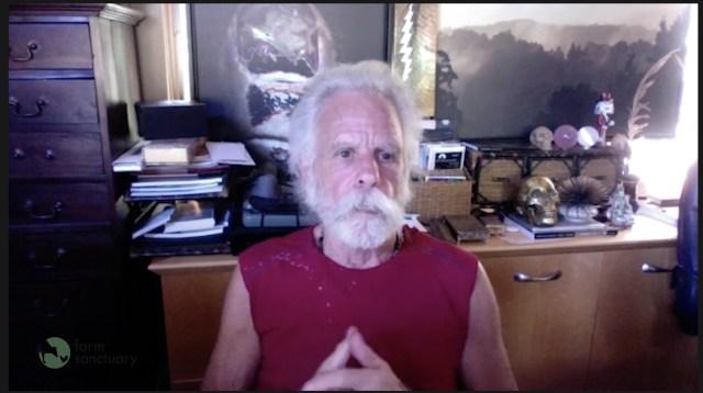Bob Weir, Billie Eilish to Take Part in Farm Sanctuary's 35th Anniversary Livestream.jpg